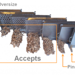 Wood Chips - Accepts, oversize, pins, fines